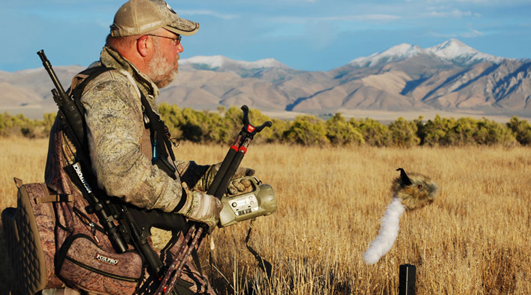 coyote-hunting-tips-foxpro-calls